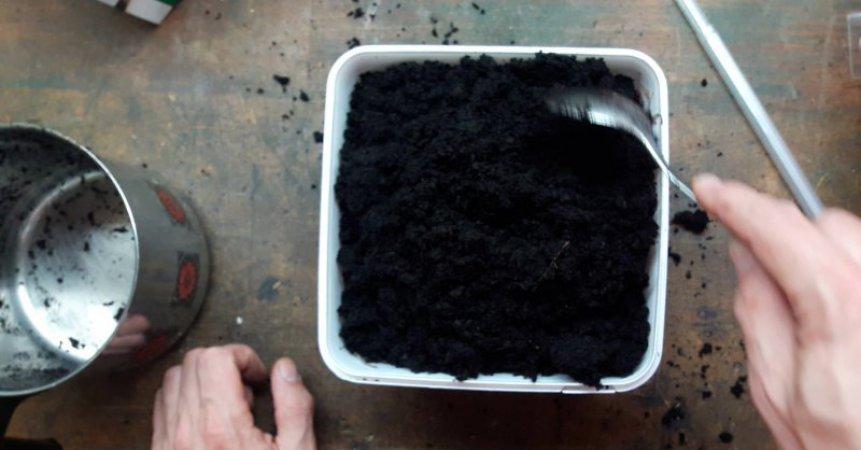 Die angefeuchtete Deckerde wird locker auf der Pilzbrut verteilt