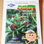 Capsicum annuum L. - Bird Pepper