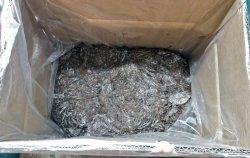 Unten in der Pilzbox ist das vom Myzel durchwachsene Substrat aus Stroh zu sehen.