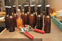 Meine 12 neuen Freunde + eine kleine Testflasche nach dem Abfüllen